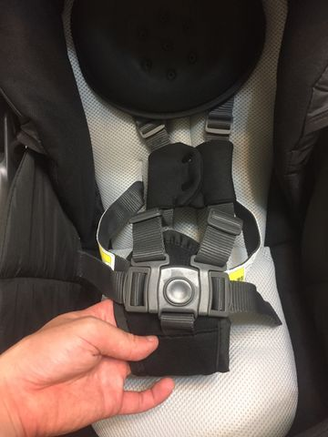 Graco CitiAce 五點式安全帶